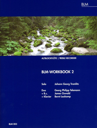 BLM-Workbook 2