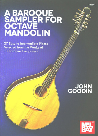 John Goodin: A Baroque Sampler