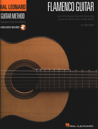 Burns Hugh: Flamenco Guitar