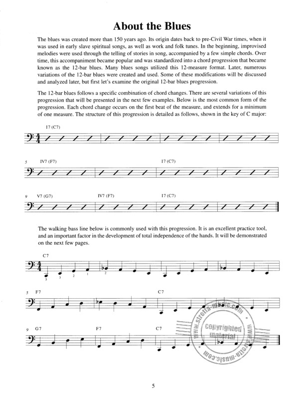 Michael Tarro: Teach Yourself To Play Blues & Boogie Piano (1)