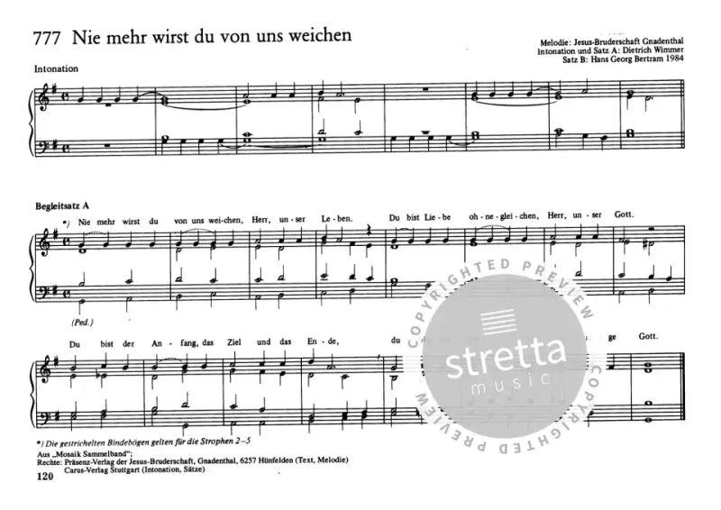 Neue Lieder II: Orgel Begleitsätze   im Stretta Noten Shop