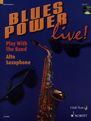 Gernot Dechert: Blues Power live!