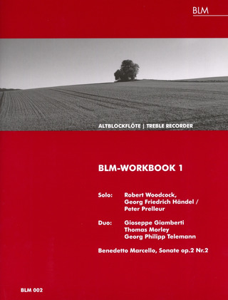 BLM-Workbook 1