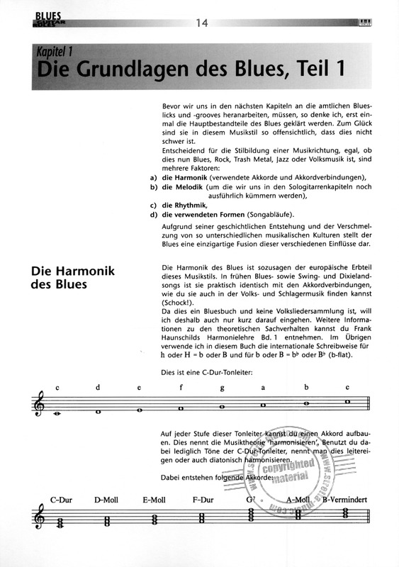 Peter Fischer: Blues Guitar Rules (1)