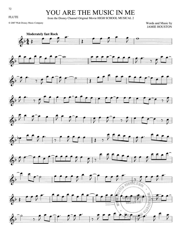 The Big Book Of Disney Songs - Flute (4)