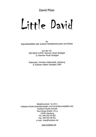 David Plüss: Little David