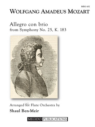 Wolfgang Amadeus Mozart: Allegro con brio from Symphony No. 25, K. 183