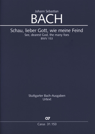 Johann Sebastian Bach: See dearest God the many Foes