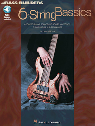 David Gross: 6-String Bassics