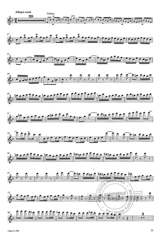 Johann Sebastian Bach: The recorder parts of his instrumental works (2)