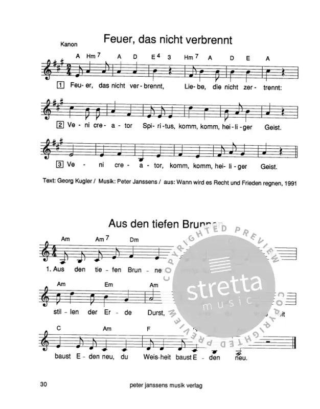 Meine Lieder Von Janssens Peter Im Stretta Noten Shop Kaufen