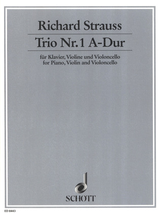 Richard Strauss: Trio Nr. 1  A-Dur op. AV. 37 (1877)