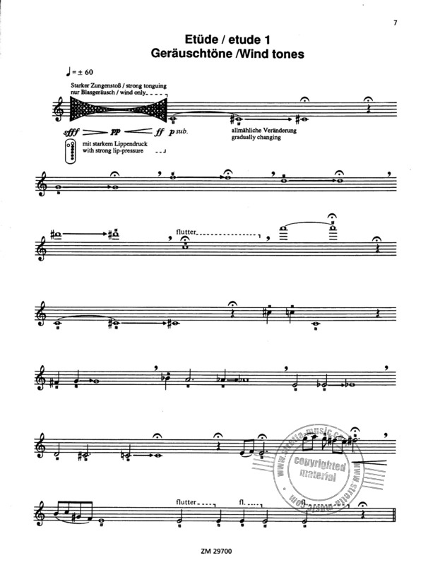 Wil Offermanns: For the contemporary flutist (1)