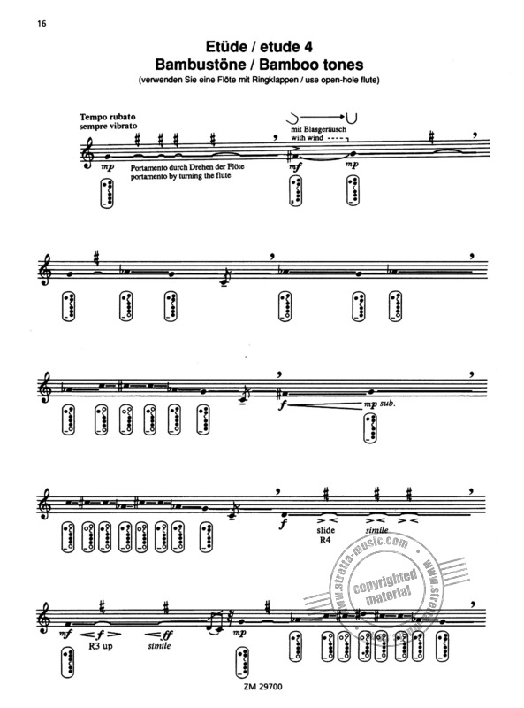 Wil Offermanns: For the contemporary flutist (2)
